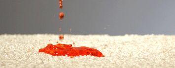 R2x Carpet Stain Amp Soil Remover Shaw Floors
