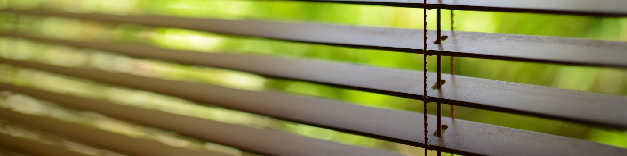 blinds with green background