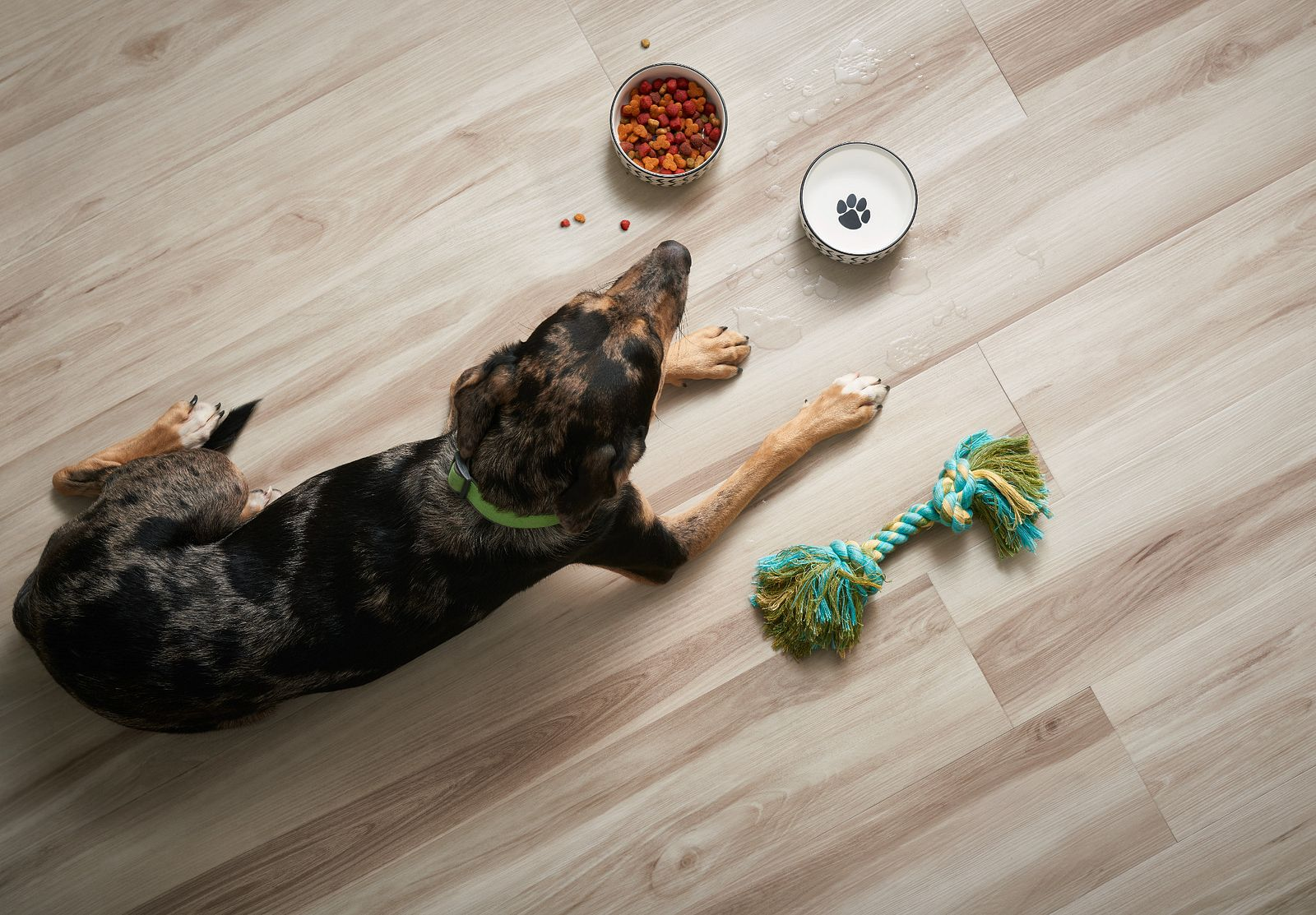 Resilient Vinyl Flooring | Everything you need to know