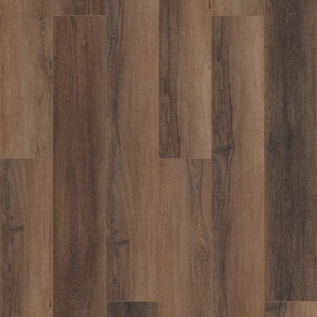 Cheshire Elm EVP vinyl flooring