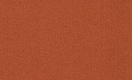 COLOR-ACCENTS-18-X-36-54786-PAPRIKA-62668-main-image