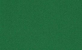 COLOR-ACCENTS-18-X-36-54786-DARK-GREEN-62375-main-image