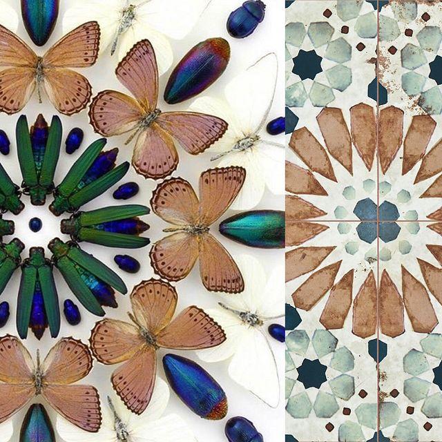 Designer Spotlight Biophilic Antiqued.JPG