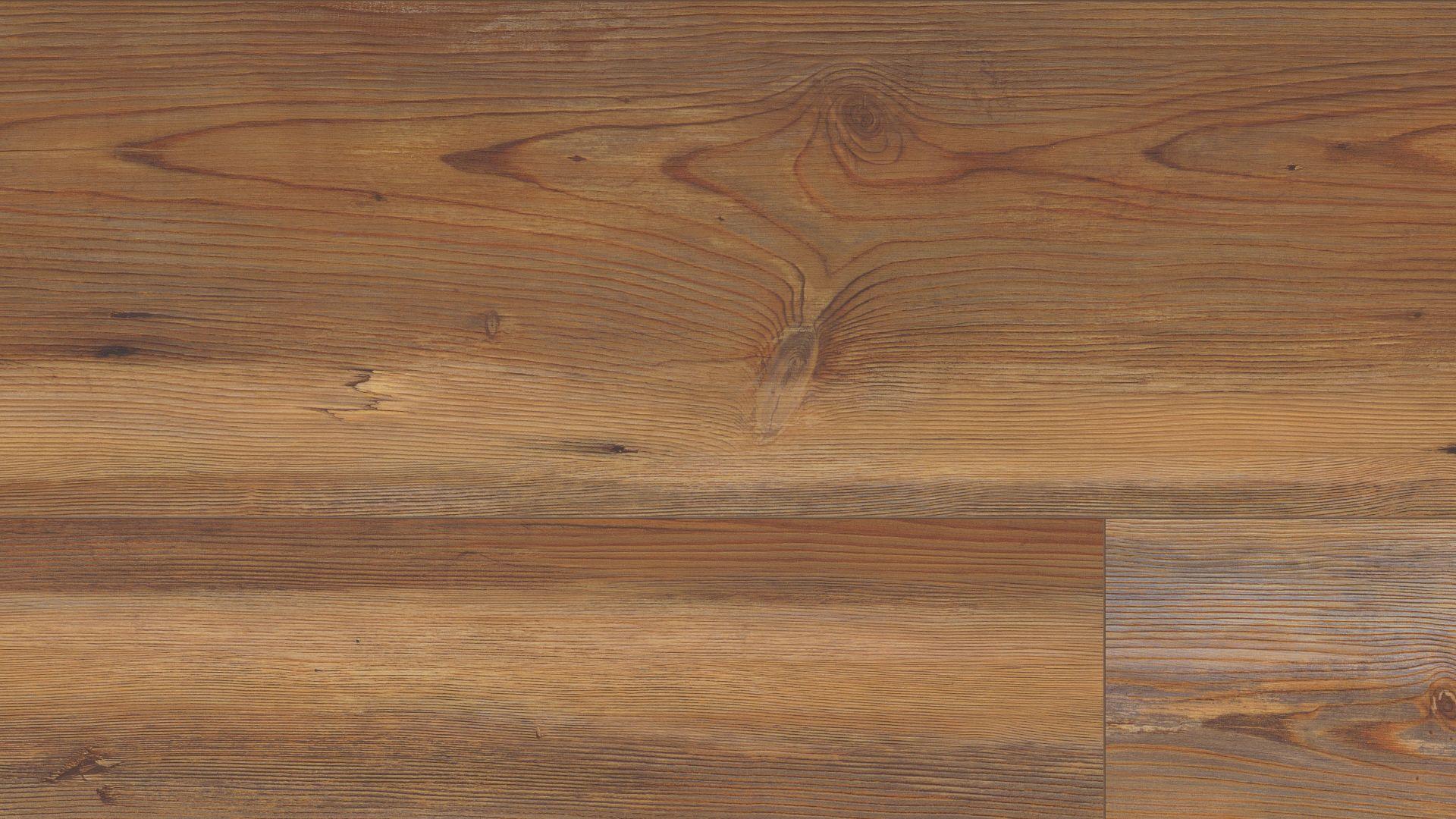 Alachian Pine Coretec Plus Xl