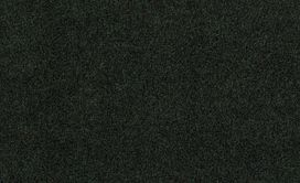 SOFTSCAPE-I-12-54684-FOREST-NIGHT-00300-main-image