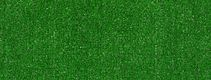 ARBOR VIEW (S) 54624 GRASS CLIPPINGS 00300 swatch image