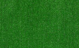 ARBOR-VIEW-(S)-54624-GRASS-CLIPPINGS-00300-main-image