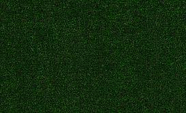 TACTIC-I-54623-HOLLY-LEAF-00310-main-image