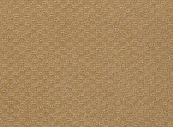 LATEST-TREND-54098-CAMELBACK-98280-main-image