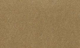BAYTOWNE-III-30-J0064-TUSCAN-GOLD-65191-main-image