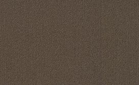COLOR-ACCENTS-18-X-36-54786-BARK-62752-main-image