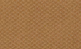 LATEST-TREND-54098-GOLD-RUSH-98281-main-image