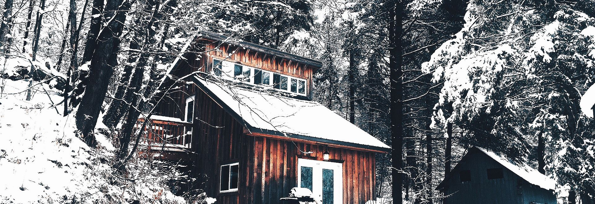 Home covered in snow among trees topped with snow