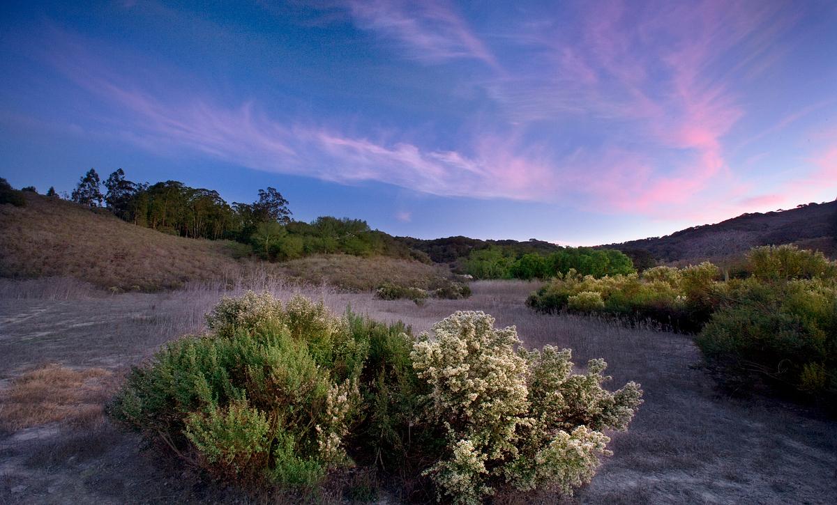Shea Homes Rice Ranch Hiking Trail