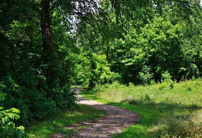 Trilogy Lake Norman Trails