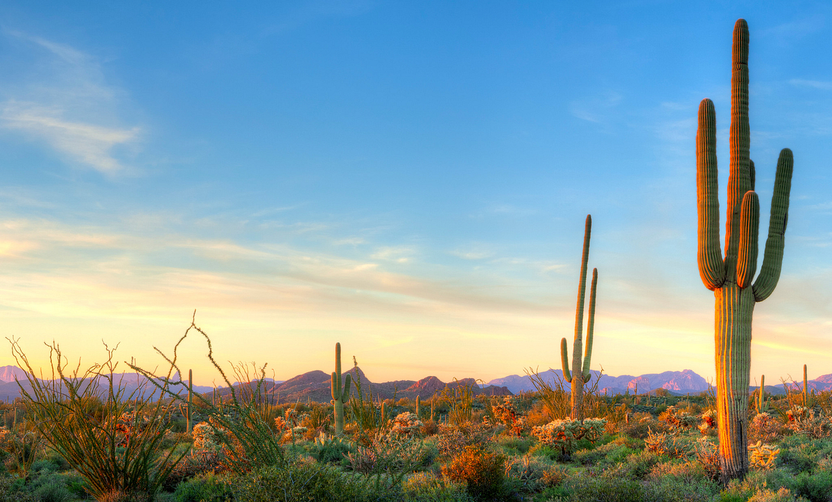 Colorful Sunset Over Desert Landscape