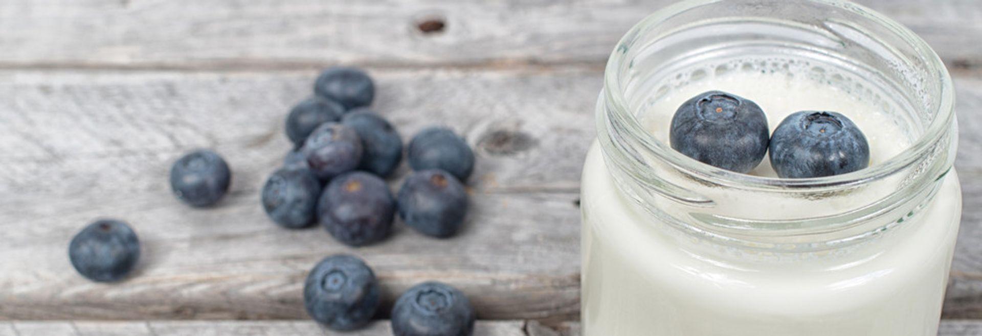 Blueberries and Probiotics