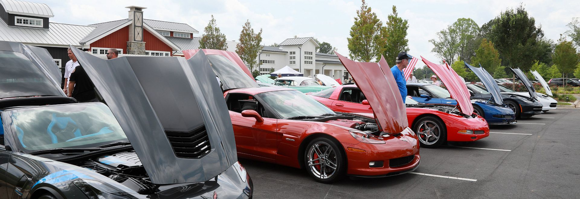 A line of Corvette cars shown at a car show
