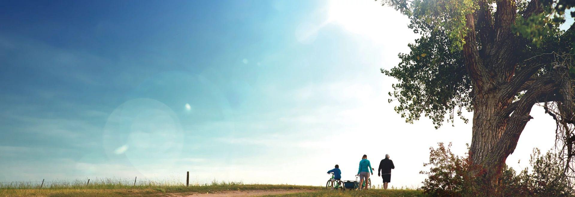 Solstice Lifestyle Summer Walking Trail