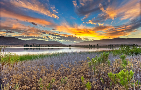 Otay Lakes