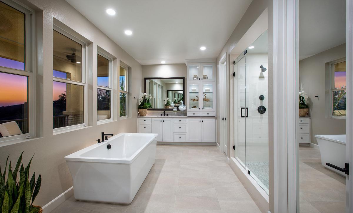 Teresina Plan 3X Master Bath
