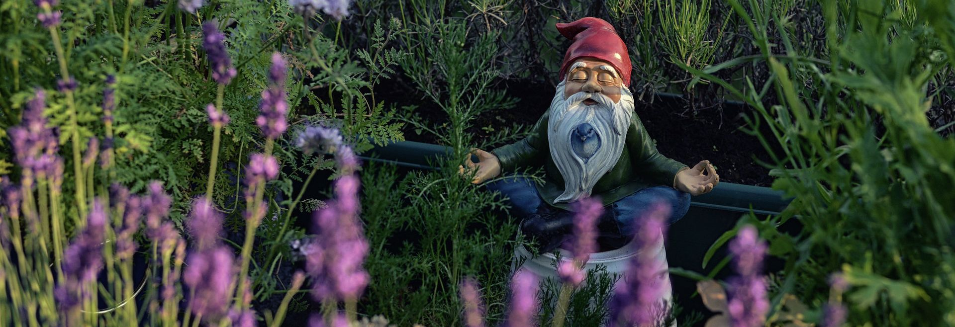 Gnome in the garden meditating