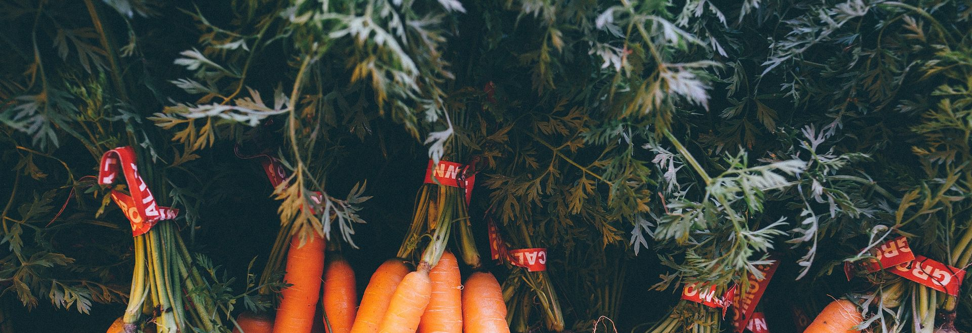 Close up up of carrots at a farmers market