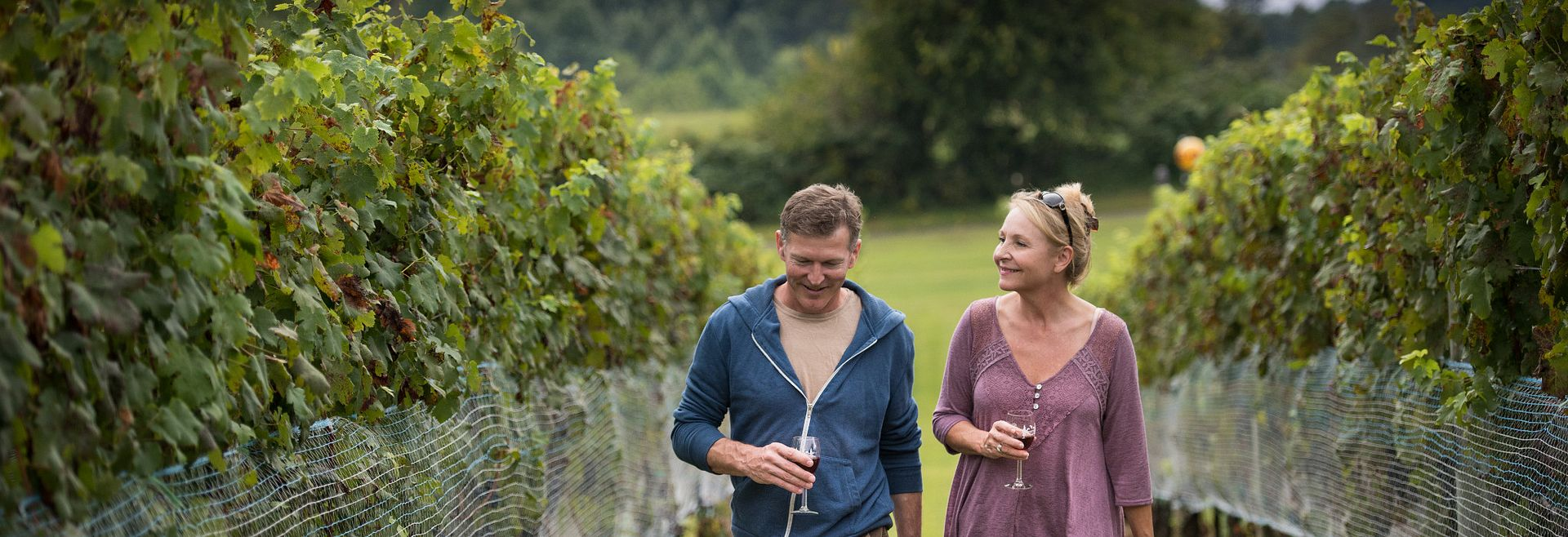Couple walking amongst grape trees holding glasses of wine and talking