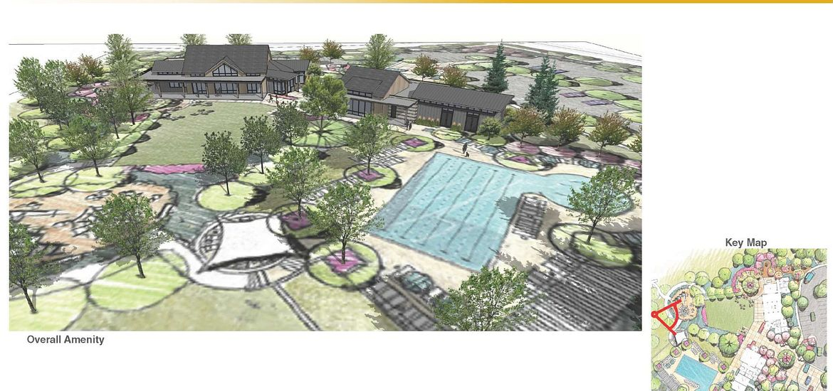 Solstice Amenity Design Imagery Pool
