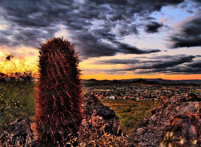 City view of Phoenix, Arizona