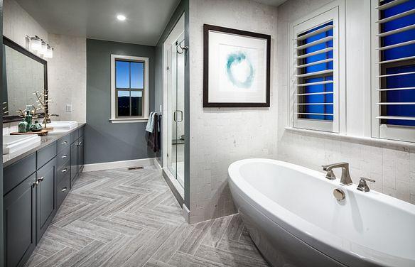BackCountry Painted Sky Indigo Mist Master Bathroom