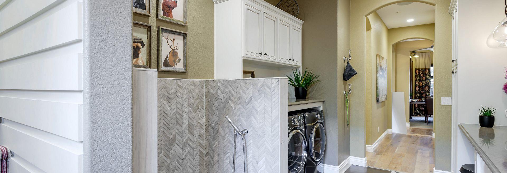 Dog Wash & Laundry Room