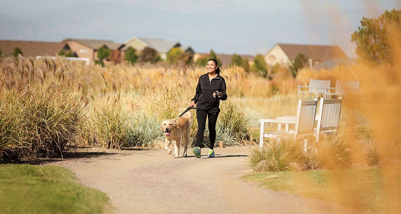 Reunion Walking Trails