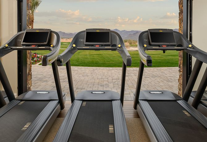 View of Mountains on Treadmill