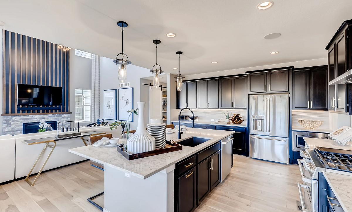 Solstice Stargaze Morningside Kitchen and Great Room