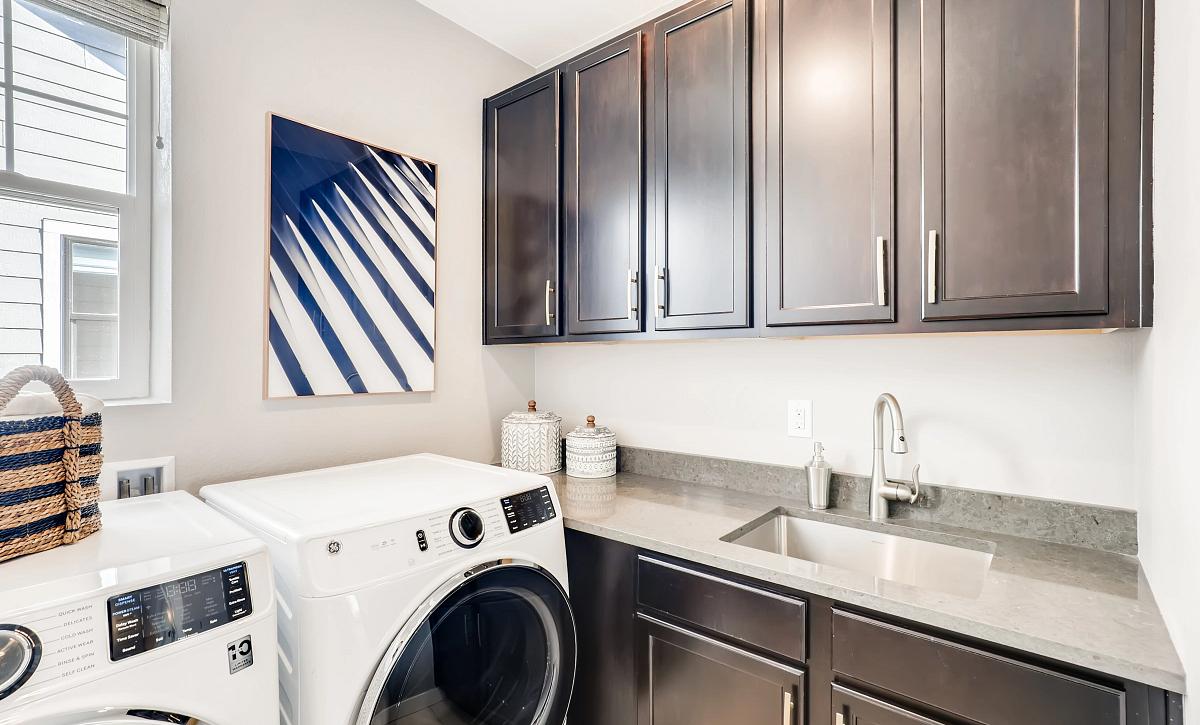 Solstice Stargaze Morningside Laundry