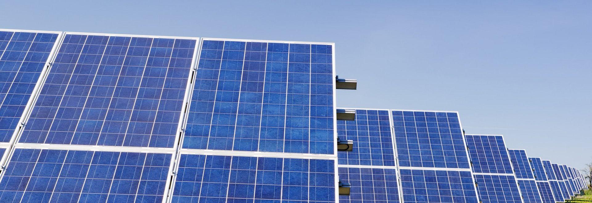 Solar panel farm in field of grass