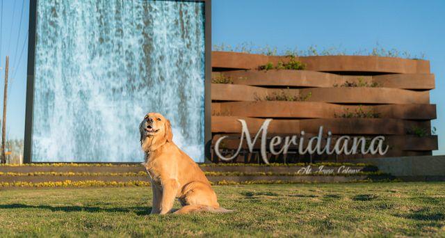 Meridiana Entry