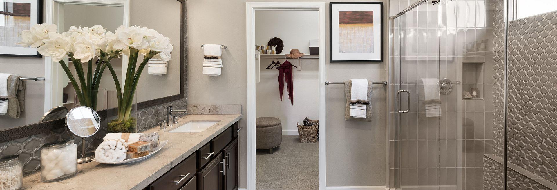 Mosaic Model Master Bathroom