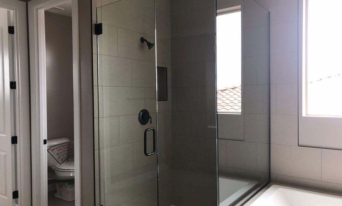 Emblem Aloravita 20 Master Shower