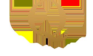 the quincy logo