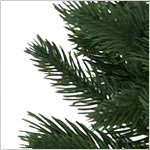 Rutherford Fir Potted Tree PDP Foliage