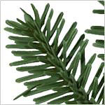 BH Fraser Fir Wreath PDP Foliage
