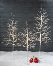 three birch twig trees with LED lights