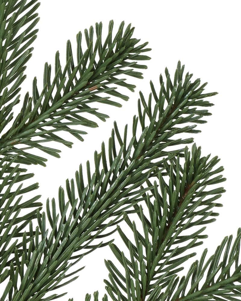 Bh Balsam Fir: Nordmann Fir Narrow Artificial Christmas Tree