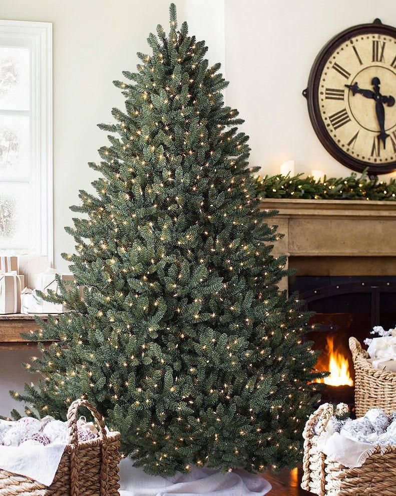 Blue Spruce Christmas Tree | Balsam Hill