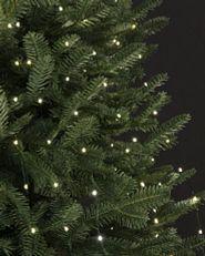 LED fairy light string strands on tree