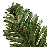 Adirondack Spruce PDP Foliage