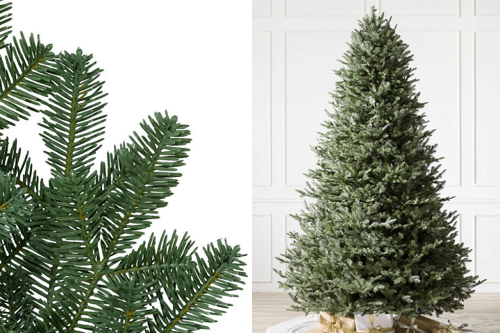 close-up and wide shots of BH Balsam Fir Christmas tree