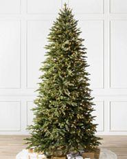 narrow Christmas tree